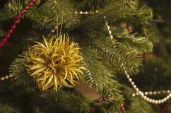 Ambiti di provenienza dell'albero di Natale con l'elemento decorativo Fotografia Stock Libera da Diritti