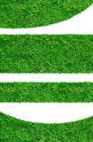 Ambiti di provenienza dell'erba verde della sorgente fresca Fotografia Stock Libera da Diritti