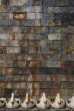 Ambiti di provenienza della parete in un castello Fotografia Stock