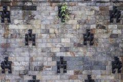 Ambiti di provenienza della parete in un castello Immagine Stock Libera da Diritti