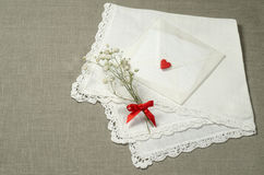 Ambiti di provenienza delle decorazioni di San Valentino per la cartolina d'auguri Fotografia Stock