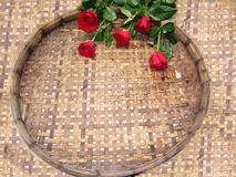 Ambiti di provenienza delle rose Immagini Stock Libere da Diritti