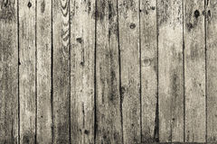 Ambiti di provenienza di alta risoluzione di legno di lerciume Fotografie Stock