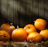 Ambiti di provenienza di ringraziamento della zucca di autunno di arte Fotografia Stock Libera da Diritti