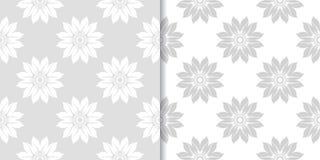 Ambiti di provenienza floreali grigio chiaro Insieme dei reticoli senza giunte Immagine Stock Libera da Diritti