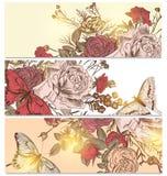 Ambiti di provenienza floreali messi con le rose e le farfalle Fotografia Stock