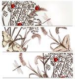 Ambiti di provenienza floreali messi nello stile elegante Fotografia Stock Libera da Diritti