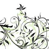 Ambiti di provenienza floreali, vettore Immagini Stock