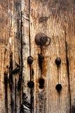 Ambiti di provenienza di legno di lerciume Immagine Stock