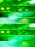 Ambiti di provenienza scintillanti degli indicatori luminosi di natale verde Fotografie Stock