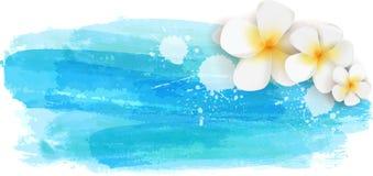Ambiti di provenienza spazzolati con i fiori blu colorato Immagine Stock Libera da Diritti