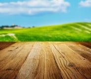 Ambiti di provenienza strutturati di legno Immagini Stock Libere da Diritti