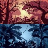 Ambiti di provenienza tropicali profondi di bosco verde e frondoso e della giungla Immagine Stock Libera da Diritti