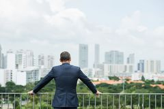 Ambitious businessman. Rear view of ambitious businessman looking at big city from rooftop stock photo