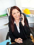 Ambitious businesswoman talking on phone. Using her computer in her office Stock Photography