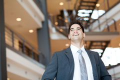 Ambitious optimistic businessman. Ambitious and optimistic young businessman looking up stock photos