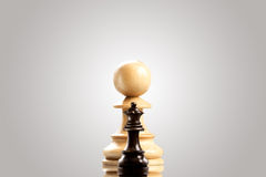Ambitious pawn. Royalty Free Stock Photo