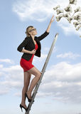 Ambitious sexy business woman Royalty Free Stock Photo