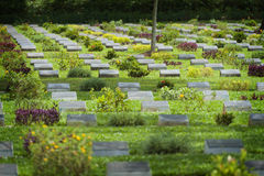 Ambon War Cemetery, Ambon City, Indonesia Royalty Free Stock Images