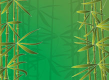 Amboo forest. Vector illustration of bamboo forest Stock Image