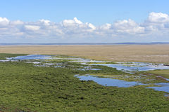 Amboseli National Park Stock Photography