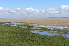 Amboseli National Park Stock Photography