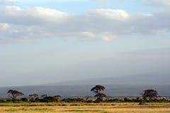Amboseli nationalpark, Kenya Royaltyfria Bilder