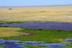 Amboseli nationalpark, Kenya Royaltyfri Bild