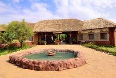 Amboseli park, Kenya Royalty Free Stock Photo