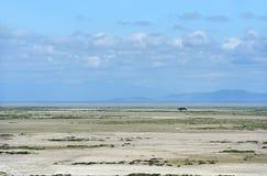 Amboseli park narodowy Zdjęcia Stock