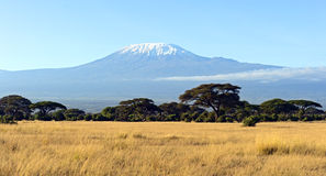 Amboseli park narodowy Fotografia Royalty Free