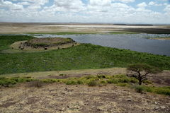 Amboseli Swamp. Taken from the ovservation point in Amboseli, Kenya. Looks over the swamp where the elephants go for water. Taken in September stock images
