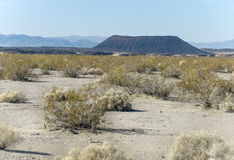 Amboy Crater, California Royalty Free Stock Photography