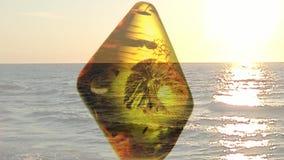 Ambra su una piattaforma girevole con il mare e un tramonto stock footage