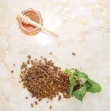 Ambrosía - un residuo de abejas y de la miel Fotos de archivo libres de regalías
