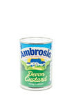 Ambrosia Devon Custard op wit Royalty-vrije Stock Foto