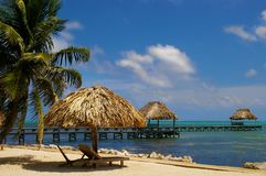 Ambrowy Caye Belize obrazy royalty free
