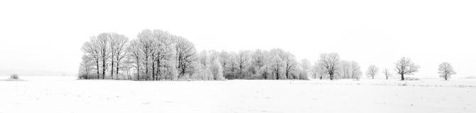 amden la zone près de l'hiver de la Suisse de ski de panorama Images stock