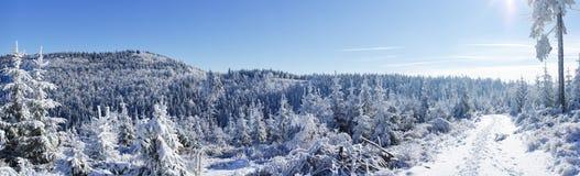 amden la zone près de l'hiver de la Suisse de ski de panorama Images libres de droits