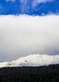 amden område nära den panoramaskidåkningswitzerland vintern Royaltyfria Bilder