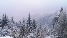 amden teren blisko panoramy narciarstwa Switzerland zima obraz royalty free