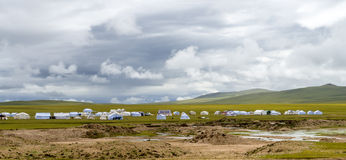 Amdo Prairie Stock Photo