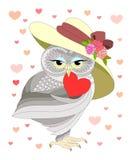 Ame a coruja Fotos de Stock
