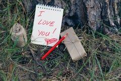 Ame el mensaje en Pinecones y la aguja del pino en el bosque del otoño Fotos de archivo libres de regalías