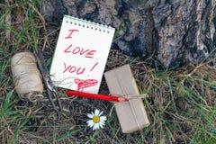 Ame el mensaje en Pinecones y la aguja del pino en el bosque del otoño Fotografía de archivo