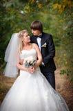 Ame la novia y al novio en el parque del verano fotos de archivo