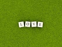 Ame la palabra en los cubos blancos en hierba verde ilustración del vector