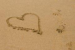 Ame la playa Fotos de archivo