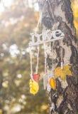 ame las luces y los colores del otoño Fotografía de archivo