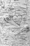Ame las memorias en carril del ` s del amante, aguilones verdes foto de archivo libre de regalías